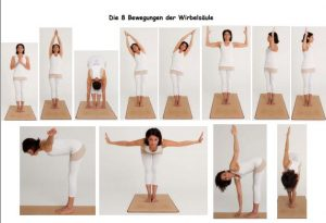 Die acht Bewegungen der Wirbelsäule, Rani Yoga Wien